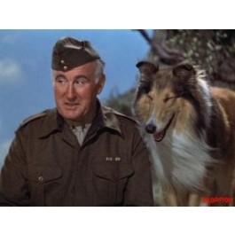S Sylvan Simon Sin Lassie DVD