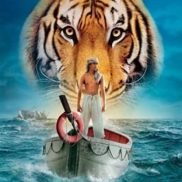 Ang Lee Pijev Život D DVD