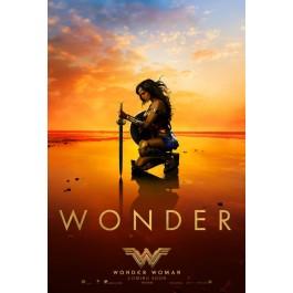 Patty Jenkins Wonder Woman DVD