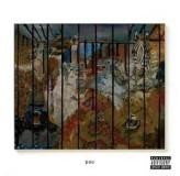 Russ Zoo CD
