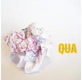 Cluster Qua LP